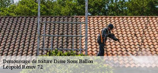 Demoussage de toiture  disse-sous-ballon-72260 Artisna Christol