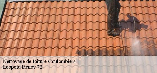 Nettoyage de toiture  coulombiers-72130 Artisna Christol